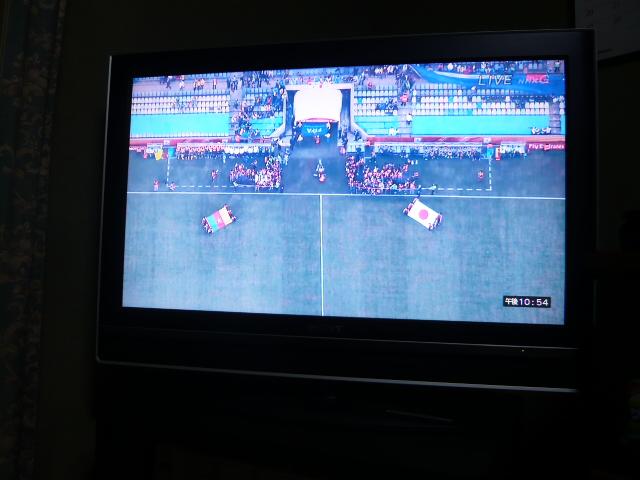 ワールドカップ  カメルーン対日本 002.jpg