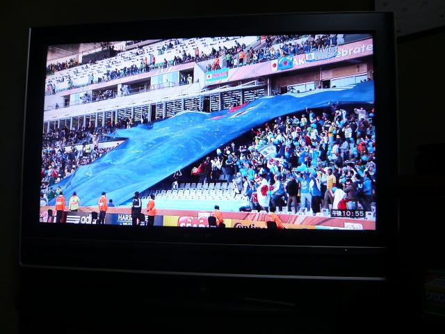 ワールドカップ  カメルーン対日本 004.jpg