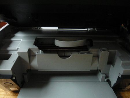P1040890.JPG