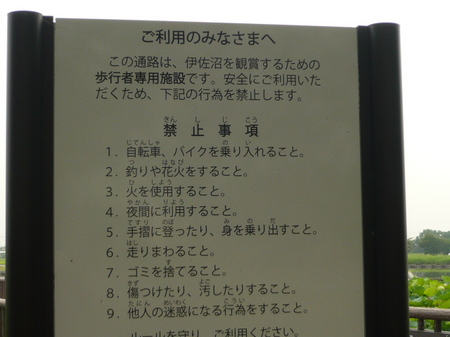P1070913.JPG